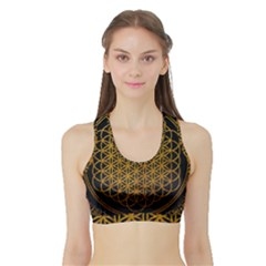 Bring Me The Horizon Cover Album Gold Sports Bra With Border by Onesevenart
