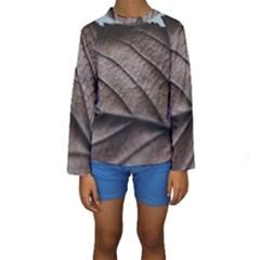 Leaf Veins Nerves Macro Closeup Kids  Long Sleeve Swimwear by Vayuart