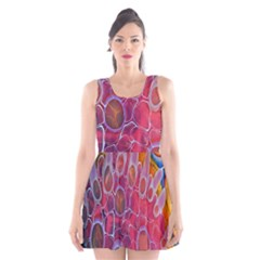 Micro Macro Belle Fisher Nature Stone Scoop Neck Skater Dress by Mariart