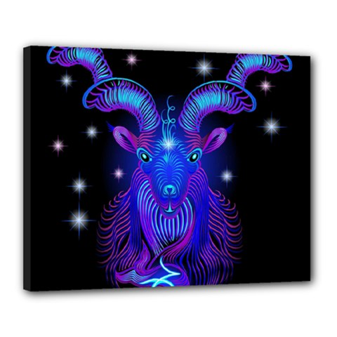 Sign Capricorn Zodiac Canvas 20  X 16  by Mariart