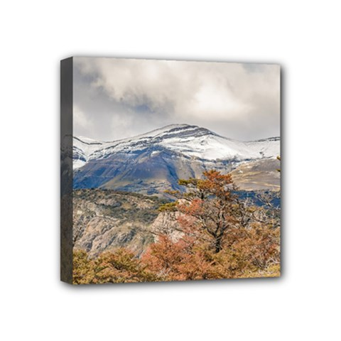 Forest And Snowy Mountains, Patagonia, Argentina Mini Canvas 4  X 4  by dflcprints