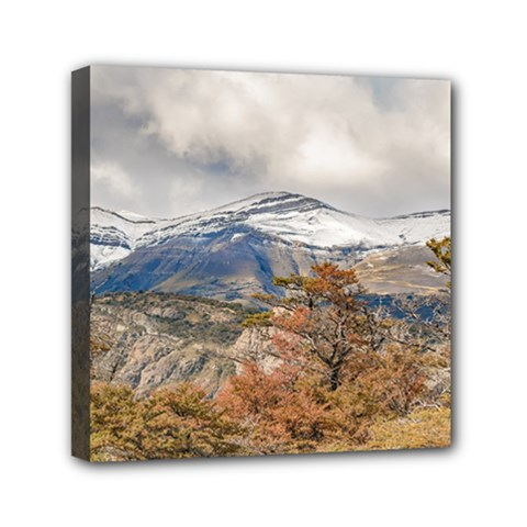 Forest And Snowy Mountains, Patagonia, Argentina Mini Canvas 6  X 6  by dflcprints