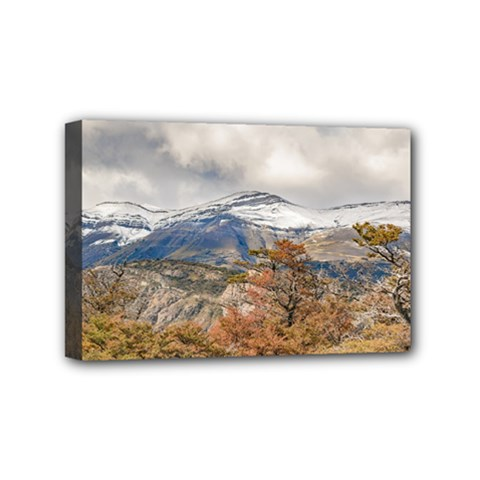 Forest And Snowy Mountains, Patagonia, Argentina Mini Canvas 6  X 4  by dflcprints