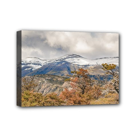 Forest And Snowy Mountains, Patagonia, Argentina Mini Canvas 7  X 5  by dflcprints