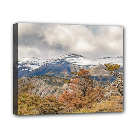 Forest And Snowy Mountains, Patagonia, Argentina Canvas 10  X 8  by dflcprints