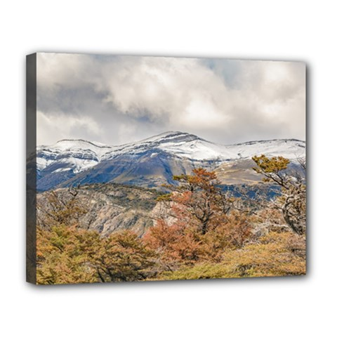Forest And Snowy Mountains, Patagonia, Argentina Canvas 14  X 11  by dflcprints