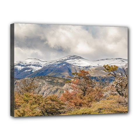 Forest And Snowy Mountains, Patagonia, Argentina Canvas 16  X 12  by dflcprints
