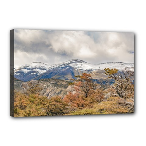 Forest And Snowy Mountains, Patagonia, Argentina Canvas 18  X 12  by dflcprints