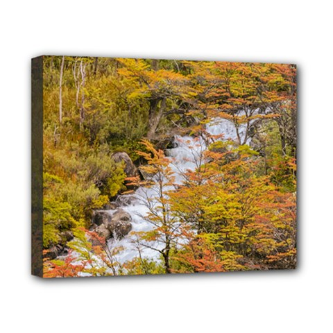 Colored Forest Landscape Scene, Patagonia   Argentina Canvas 10  X 8  by dflcprints
