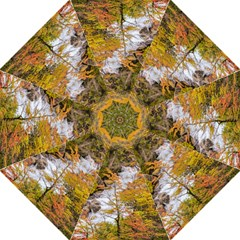 Colored Forest Landscape Scene, Patagonia   Argentina Folding Umbrellas by dflcprints