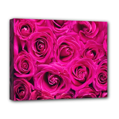 Pink Roses Roses Background Deluxe Canvas 20  X 16