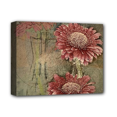 Flowers Plant Red Drawing Art Deluxe Canvas 14  X 11  by Nexatart