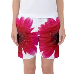 Flower Isolated Transparent Blossom Women s Basketball Shorts