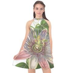 Passion Flower Flower Plant Blossom Halter Neckline Chiffon Dress  by Nexatart