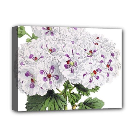 Flower Plant Blossom Bloom Vintage Deluxe Canvas 16  X 12   by Nexatart