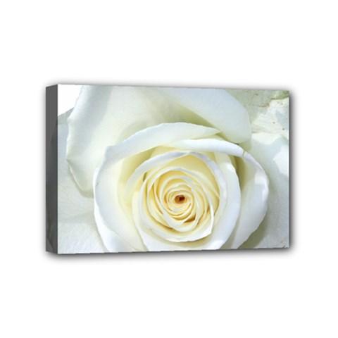 Flower White Rose Lying Mini Canvas 6  X 4  by Nexatart