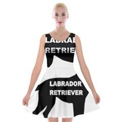 Labrador Retriever Black Name Color Silo Velvet Skater Dress by TailWags