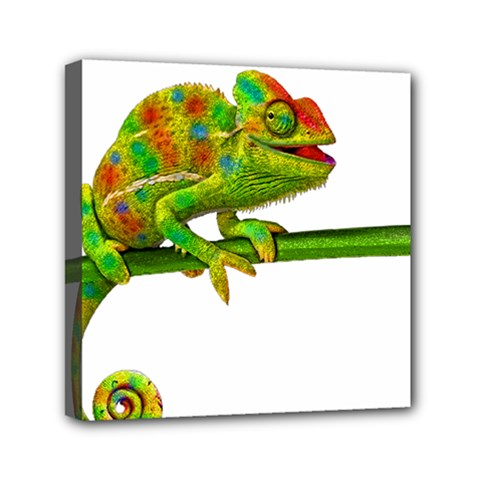 Chameleons Mini Canvas 6  X 6  by Valentinaart