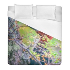 Woodpecker At Forest Pecking Tree, Patagonia, Argentina Duvet Cover (full/ Double Size) by dflcprints