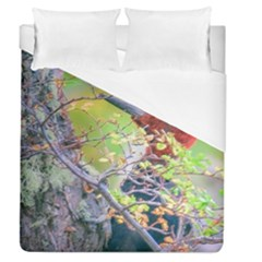 Woodpecker At Forest Pecking Tree, Patagonia, Argentina Duvet Cover (queen Size) by dflcprints