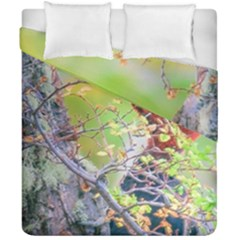 Woodpecker At Forest Pecking Tree, Patagonia, Argentina Duvet Cover Double Side (california King Size) by dflcprints