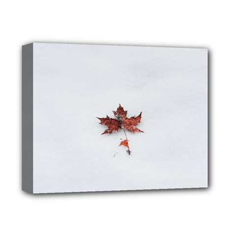 Winter Maple Minimalist Simple Deluxe Canvas 14  X 11  by Nexatart