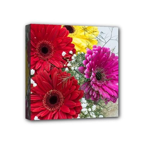 Flowers Gerbera Floral Spring Mini Canvas 4  X 4  by Nexatart