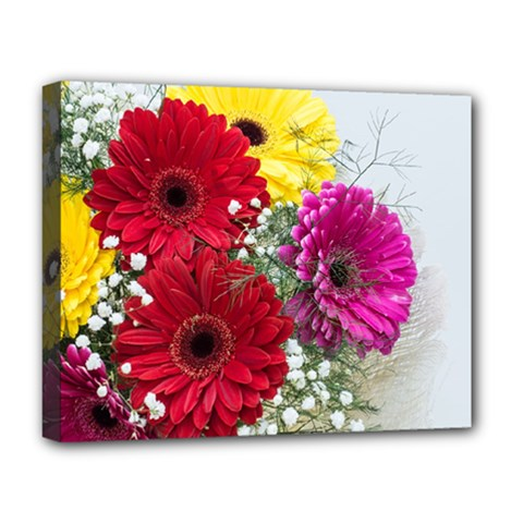 Flowers Gerbera Floral Spring Deluxe Canvas 20  X 16
