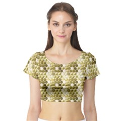 Cleopatras Gold Short Sleeve Crop Top (tight Fit) by psweetsdesign