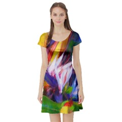 Palms02 Short Sleeve Skater Dress by psweetsdesign