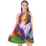 Palms02 Halter Neckline Chiffon Dress
