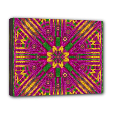 Feather Stars Mandala Pop Art Deluxe Canvas 20  X 16   by pepitasart