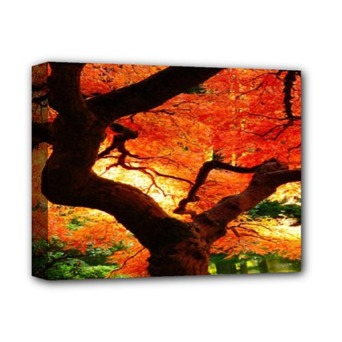 Maple Tree Nice Deluxe Canvas 14  X 11  by BangZart