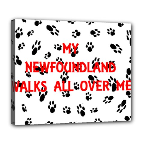 My Newfie Walks On Me Deluxe Canvas 24  X 20   by TailWags
