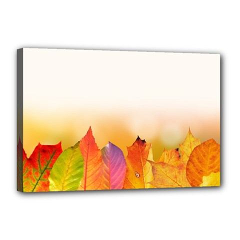 Autumn Leaves Colorful Fall Foliage Canvas 18  X 12  by BangZart