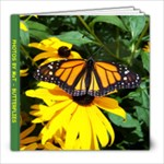 butterflies - 8x8 Photo Book (30 pages)