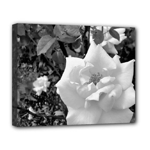White Rose Black Back Ground Greenery ! Deluxe Canvas 20  X 16   by CreatedByMeVictoriaB