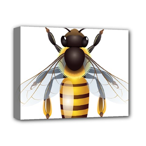 Bee Deluxe Canvas 14  X 11  by BangZart