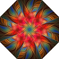 Vintage Colors Flower Petals Spiral Abstract Hook Handle Umbrellas (large) by BangZart