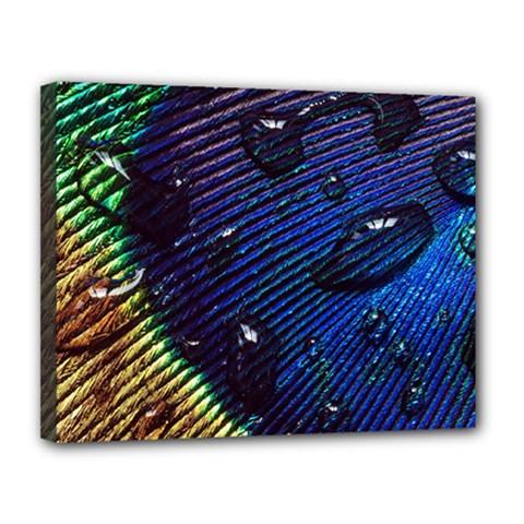 Peacock Feather Retina Mac Canvas 14  X 11  by BangZart