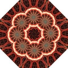 Circle Pattern Straight Umbrellas by BangZart
