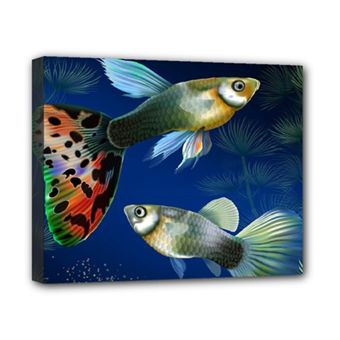 Marine Fishes Canvas 10  X 8  by BangZart