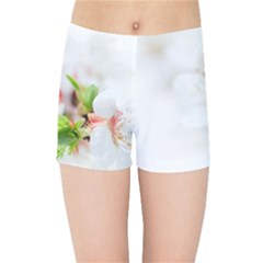Fragility Flower Petals Tenderness Leaves  Kids Sports Shorts by amphoto