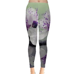 Branch Flowering Cherry Spring  Leggings  by amphoto