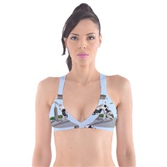 Great Dane Plunge Bikini Top