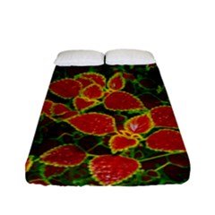 Flower Red Nature Garden Natural Fitted Sheet (full/ Double Size) by Nexatart