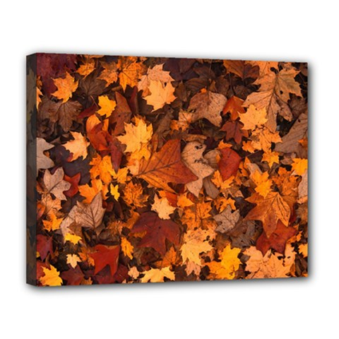 Fall Foliage Autumn Leaves October Canvas 14  X 11  by Nexatart