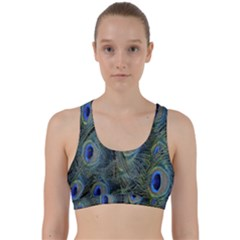Peacock Feathers Blue Bird Nature Back Weave Sports Bra by Nexatart
