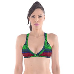 Cells Rainbow Plunge Bikini Top by Mariart