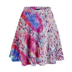 Histology Inc Histo Logistics Incorporated Alcian Blue High Waist Skirt by Mariart